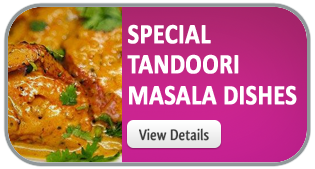 Special Tandoori Masala Dishes